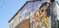 Paseo por las paredes de Vitoria. A todo Color