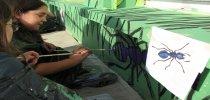 pintando bichos