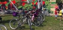 Bicicletas!!!!